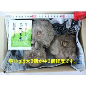 """販売元:""""ITANSEセレクト通販""""Healthy Herb & Plants & ..."""