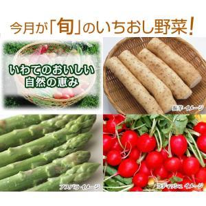 いわての畑から採れたて新鮮 【 野菜お届け便 4月号 】...