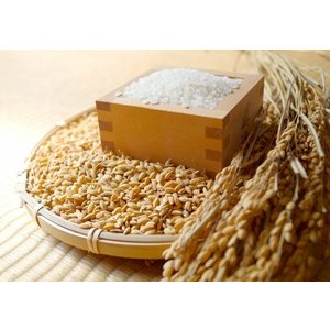 白米 徳島県産 農薬・肥料不使用 自然栽培米「あきさかり」1等級 5kg itempost