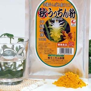秋うっちん粉 (アルミパック入り 大) 沖縄産秋ウコン使用 粉末タイプ
