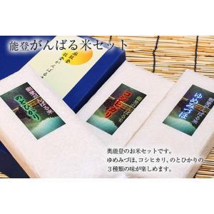 【送料込み】能登がんばる米セット itempost