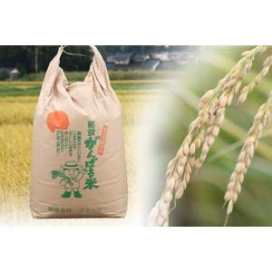 【送料込み】がんばる米10kg itempost