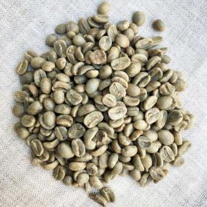 生豆 ペルー ティアラ 無農薬栽培 (500g)ハンドピック済み