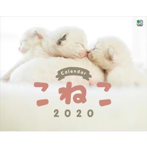 カレンダー2020 こねこ