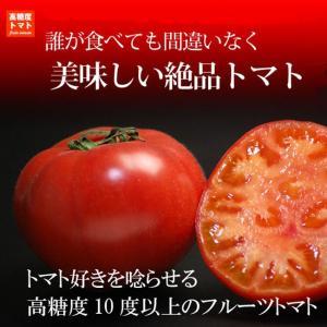 ギフトに大人気  糖度10度以上のフルーツトマト-珊瑚樹トマトS特選1kg 無農薬 徳島 産地直送 ...