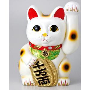 〔常滑焼招き猫 置物 縁起物 インテリア小物〕 白手長小判猫 10号(左手)|itibei