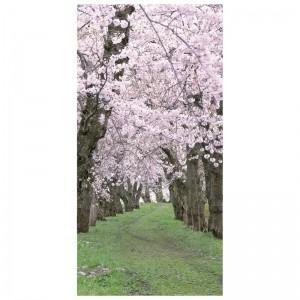 【装飾品 ひな祭り・お花見】タペストリー 桜新緑|itibei