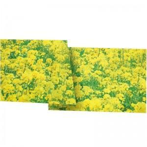 【装飾品 ひな祭り・お花見】菜の花シート 30cm 3枚|itibei
