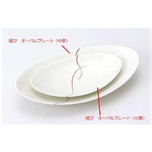 〔和皿・洋皿 有田焼〕 結び オーバルプレート(小赤) 5個組|itibei