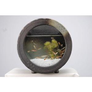 〔信楽焼 水槽〕 黒釉丸水槽|itibei