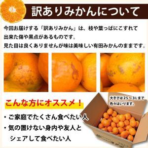 みかん 訳あり 2kg 和歌山  自宅用 大粒 中粒 ミックス 箱買い ご当地 お取り寄せ 2つ買うと送料無料 3箱買うと1箱おまけ|ito-noen|19