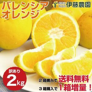 バレンシアオレンジ 和歌山産 訳あり 2kg オレンジ みかん 自宅用 お中元 ギフト フルーツ