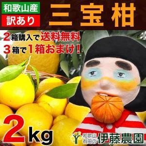 「訳あり」三宝柑 2kg 2箱〜送料無料、3箱で1箱おまけ...