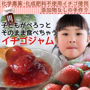 有機いちごジャム2本セット 完熟いちごとてんさい糖で作った無添加ジャム 国産|itofarm