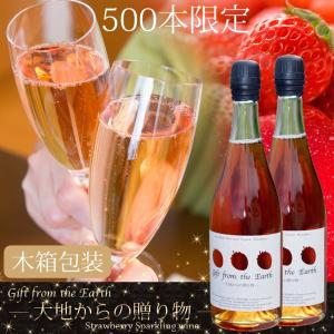 いちごスパークリングワイン 農薬不使用、肥料不使用で栽培したイチゴで作ったスパークリングワイン2本セット【ギフト木箱包装用】|itofarm