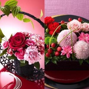 母の日 プレゼント 花 スイーツ 選べる花 カーネーション ...