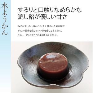水ようかん【こし餡】6個入 滋賀県WEB物産展|itojyu