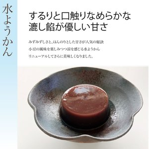 水ようかん【こし餡】10個入 滋賀県WEB物産展|itojyu
