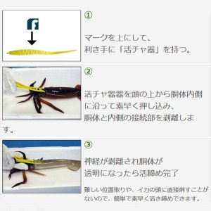 イカ絞め フジワラ イカ活ッチャ器|itoturi|03