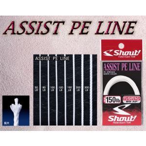 シャウト(Shout!) アシストPEライン(ASSIST PE LINE) 89−AP |itoturi