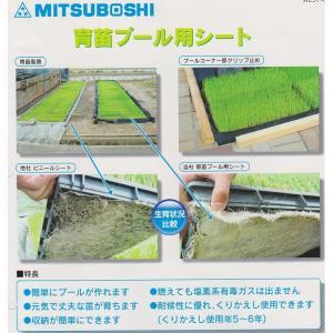 育苗プール用シートGES-20|itounouki
