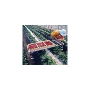 国産 アルミ収穫台車 DBS-1350×600 【メーカー直送/代引不可/超強力アルミ/ナガノ】+L119|itounouki