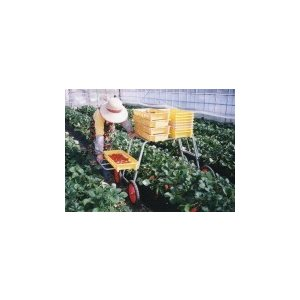 国産 アルミ収穫台車 DBS-900PX 【メーカー直送/代引不可/超強力アルミ/ナガノ】|itounouki