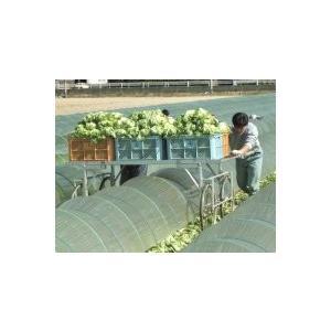 国産 アルミ収穫台車 DBS-B1850 【メーカー直送/代引不可/超強力アルミ/ナガノ】|itounouki|02