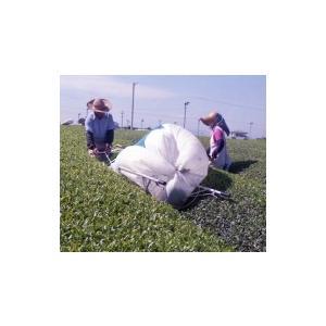 国産 アルミ茶刈・運搬台車 ちゃっかりさん DMA-900X 【メーカー直送/代引不可/超強力アルミ/ナガノ】 itounouki 02