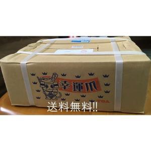 ニプロロータリー用 汎用爪 60本セット【東亜重工製/フランジタイプ/51-120A】|itounouki