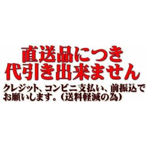 東日興産 運搬車・作業機用ゴムクローラ 180×60×33(180*60*33)お得な2本セット!! ≪送料無料!代引き不可≫UN186033 ピッチ60|itounouki|02