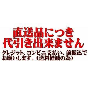 東日興産 運搬車・作業機用ゴムクローラ 230×72×42(230*72*42)お得な2本セット!! ≪送料無料!代引き不可≫UN237242 ピッチ72|itounouki|02