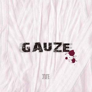 Compilation CD GAUZE|iveofficialshopplus