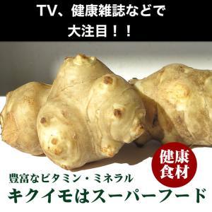 キクイモ 無農薬・有機栽培 約2kg 送料無料