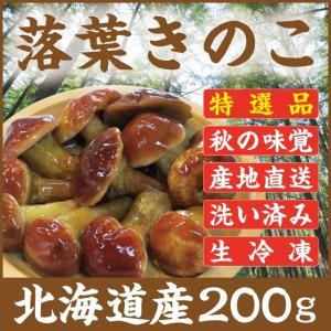 落葉きのこ 北海道産 天然200g 生冷凍 らくようきのこ ハナイグチ|iwafo