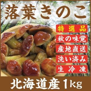 落葉きのこ 北海道産 天然1kg 生冷凍 らくようきのこ ハナイグチ|iwafo