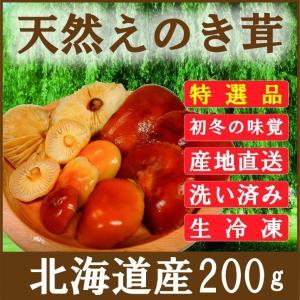 きのこ えのき茸 天然 200g 北海道産 生冷凍 エノキタケ ユキノシタ ナメタケ|iwafo
