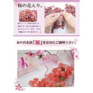 桜スイーツ 京さくらのど飴|iwaiseika|03