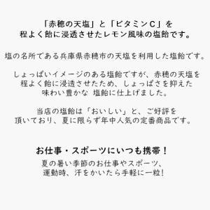 【ギフト用・送料無料】レモン塩飴(レモン塩あめ)1kg☆お中元/父の日|iwaiseika|03