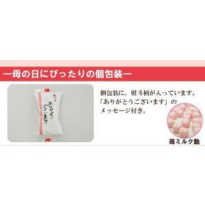 母の日キャンディーパック「ありがとうメッセージ・カーネーション造花付」|iwaiseika|02