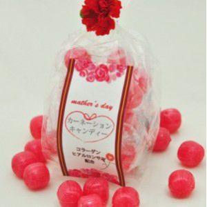 母の日 花 スイーツ☆カーネーションキャンディー|iwaiseika