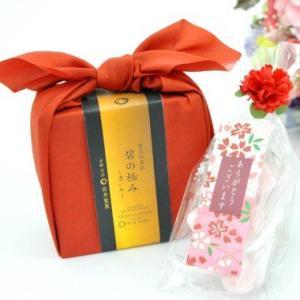 母の日 ギフト 碧の極みSEキャンディーセット(送料無料)|iwaiseika
