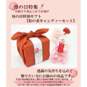 母の日のプレゼント 母の日 2020 ギフト プチギフト 飴の素キャンディーセット 送料無料|iwaiseika|02
