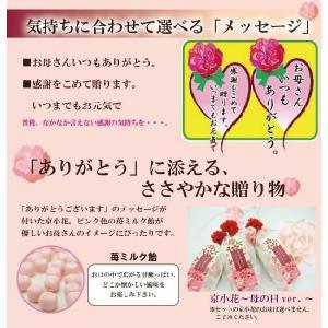 母の日のプレゼント 母の日 2020 ギフト プチギフト 飴の素キャンディーセット 送料無料|iwaiseika|05