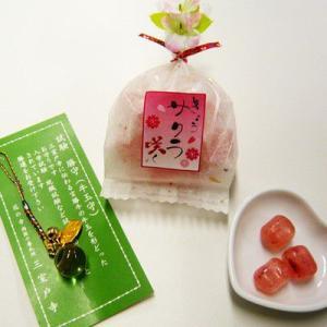 【合格祈願お菓子飴】きょうサクラ咲く お守り付|iwaiseika