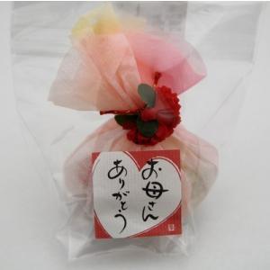 母の日ギフト 京ひらり「お母さんありがとう」カーネーション造花付|iwaiseika