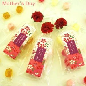 母の日 プレゼント ギフト 京小花 (母の日カーネーションVer)「ありがとう」|iwaiseika