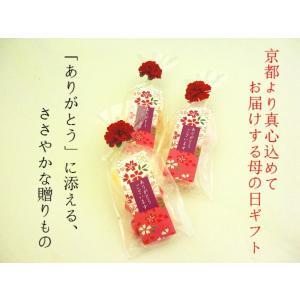 母の日 プレゼント ギフト 京小花 (母の日カーネーションVer)「ありがとう」|iwaiseika|02