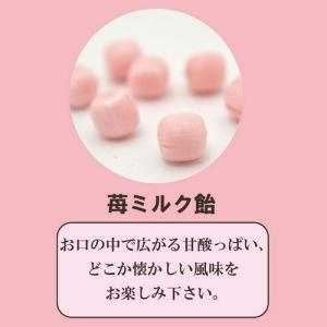バレンタイン 義理 キャンディ 春色パステル 個包装 プチギフト プレゼント 100袋|iwaiseika|05