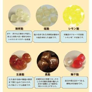 ホワイトデー お返し 送料無料 風呂敷包み「彩り京飴セット」|iwaiseika|04